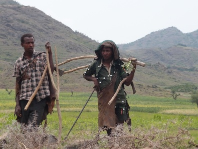 Peasant farmers in Amhara Region, Ethiopia
